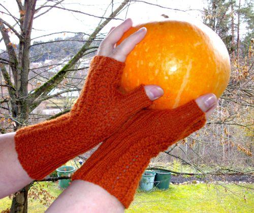 Pumpkin Soup Mitts